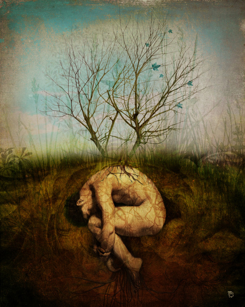 (Dreaming Tree by Christian Schloe)