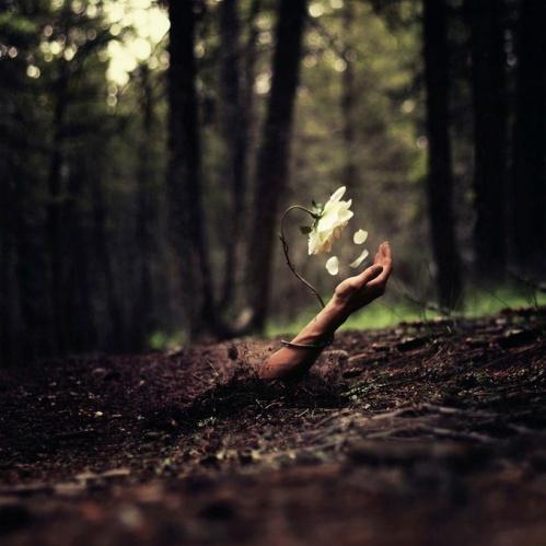 (http://designyoutrust.com/2013/04/the-surreal-photography-of-joel-robinson/)