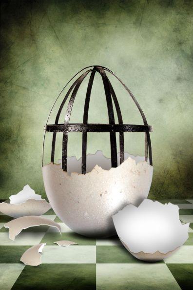 eggcage